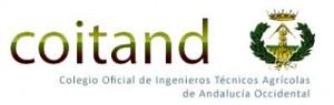 COITAND logo y Texto